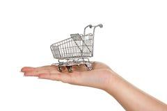 αγορές χεριών Στοκ εικόνες με δικαίωμα ελεύθερης χρήσης