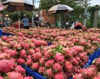 Αγοραστές και πολλά κιβώτια με τα ώριμα φρούτα δράκων στοκ εικόνα με δικαίωμα ελεύθερης χρήσης