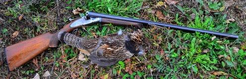 Αγριόγαλλος Ruffed και εκλεκτής ποιότητας κυνηγετικό όπλο Στοκ Φωτογραφία