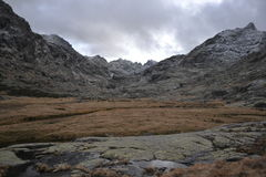 αγριότητα Στοκ φωτογραφία με δικαίωμα ελεύθερης χρήσης