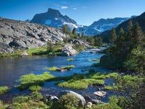 Αγριότητα Ansel Adams στις ανατολικές οροσειρές Στοκ εικόνα με δικαίωμα ελεύθερης χρήσης