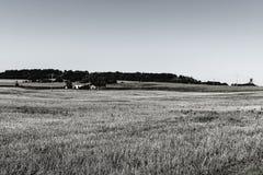 Αγροικία στο καλλιεργήσιμο έδαφος Στοκ Εικόνες