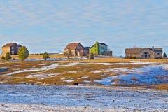 Αγροικίες και βόσκοντας άλογα στον αγροτικό χειμερινό τομέα Στοκ φωτογραφίες με δικαίωμα ελεύθερης χρήσης