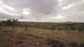 Αγροκτήματα στα προάστια Cala Mendia φιλμ μικρού μήκους