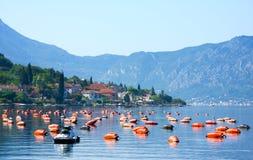 Αγροκτήματα στρειδιών στον κόλπο Kotor, Μαυροβούνιο, kotor-Risan στοκ εικόνες