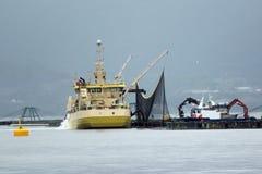 Αγροκτήματα ψαριών στη Νορβηγία στοκ εικόνα
