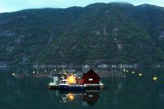 Αγροκτήματα ψαριών στο φιορδ Hardanger, νομός Hordaland, Νορβηγία στοκ φωτογραφία με δικαίωμα ελεύθερης χρήσης