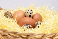 Αγροτικά αυγά σε ένα καλάθι αχύρου Αυγό της κότας και αυγό των ορτυκιών στοκ εικόνα με δικαίωμα ελεύθερης χρήσης
