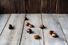 Αγροτικά κάστανα στο ξύλινο υπόβαθρο στοκ εικόνες