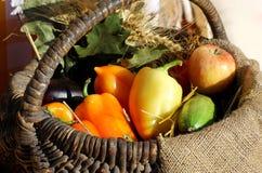 Αγροτικά κίτρινα και κόκκινα πιπέρια στο σάκο Στοκ φωτογραφία με δικαίωμα ελεύθερης χρήσης