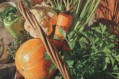 Αγροτικά λαχανικά στο καλάθι Φυτικός φρέσκος κήπος οργανικός στοκ φωτογραφίες με δικαίωμα ελεύθερης χρήσης
