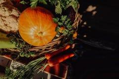 Αγροτικά λαχανικά στο καλάθι Φυτικός φρέσκος κήπος οργανικός στοκ εικόνες