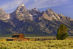 αγροτικά μεγάλα tetons στοκ φωτογραφίες
