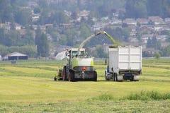 Αγροτικά μηχανήματα που συγκομίζουν το σανό Στοκ Εικόνα