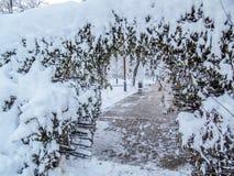 Αγροτικά ραβδιά φρακτών Στοκ φωτογραφία με δικαίωμα ελεύθερης χρήσης