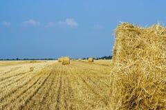 Αγροτικά τοπία της Τοσκάνης, Ιταλία, Ευρώπη, ρόλοι των θυμωνιών χόρτου στον τομέα Τοπίο θερινών αγροκτημάτων με τη θυμωνιά χόρτου Στοκ Εικόνες