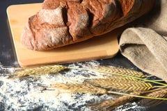Αγροτικά φλοιώδη αυτιά ψωμιού και σίτου σε ένα σκοτάδι Στοκ Εικόνες