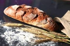 Αγροτικά φλοιώδη αυτιά ψωμιού και σίτου σε ένα σκοτάδι Στοκ φωτογραφία με δικαίωμα ελεύθερης χρήσης