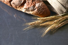 Αγροτικά φλοιώδη αυτιά ψωμιού και σίτου σε ένα σκοτάδι Στοκ Εικόνα