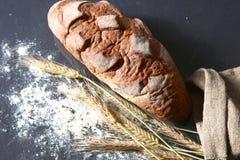 Αγροτικά φλοιώδη αυτιά ψωμιού και σίτου σε ένα σκοτάδι Στοκ εικόνες με δικαίωμα ελεύθερης χρήσης