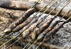 Αγροτικά ψημένα στη σχάρα ψάρια Στοκ φωτογραφία με δικαίωμα ελεύθερης χρήσης