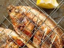 Αγροτικά ψημένα στη σχάρα ψημένα ψάρια Στοκ εικόνα με δικαίωμα ελεύθερης χρήσης