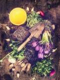 Αγροτικές εγκαταστάσεις λουλουδιών σεσουλών και άνοιξη κηπουρικής, που συνθέτουν στο εκλεκτής ποιότητας υπόβαθρο Στοκ εικόνα με δικαίωμα ελεύθερης χρήσης