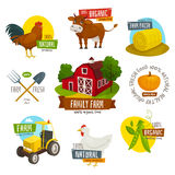 Αγροτικές ετικέτες καθορισμένες, διανυσματική απεικόνιση κινούμενων σχεδίων, εμβλήματα καλλιέργειας με τα εργαλεία αγελάδων νεοσσ Στοκ Φωτογραφία