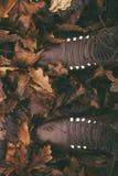 Αγροτικές καφετιές μπότες στα φύλλα φθινοπώρου στοκ εικόνες
