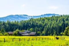 Αγροτικές οικογένειες Στοκ Εικόνες