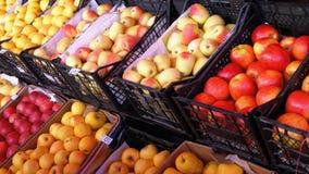 Αγροτική αγορά απόθεμα βίντεο