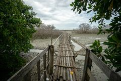 Αγροτική γέφυρα μπαμπού κοντά στα λιμάνια Μπαλί Benoa Δεν πρόκειται να συνδέσει με οπουδήποτε, ακριβώς μια θέση για τους ανθρώπου στοκ φωτογραφία με δικαίωμα ελεύθερης χρήσης
