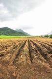 αγροτική γη στοκ εικόνες