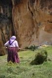 αγροτική γυναίκα Στοκ φωτογραφία με δικαίωμα ελεύθερης χρήσης