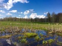 Αγροτική επαρχία Latgalian Στοκ εικόνα με δικαίωμα ελεύθερης χρήσης