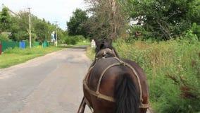 Αγροτική επαρχία scape, χρησιμοποιημένο άλογο φέρνοντας κάρρο, χωριό απόθεμα βίντεο