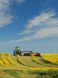 αγροτική εργασία Στοκ εικόνες με δικαίωμα ελεύθερης χρήσης