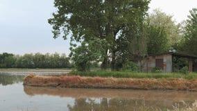 Αγροτική καλύβα εκτός από έναν τομέα ρυζιού σε Lomellina, Ιταλία, πανοραμική άποψη φιλμ μικρού μήκους