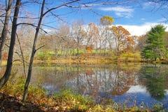 αγροτική λίμνη Στοκ εικόνες με δικαίωμα ελεύθερης χρήσης