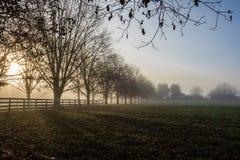 Αγροτική ομίχλη πρωινού στοκ φωτογραφίες