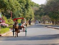 Αγροτική οδός σε Bagan Στοκ Φωτογραφίες