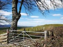 Αγροτική πύλη, σίδηρος Στοκ εικόνα με δικαίωμα ελεύθερης χρήσης