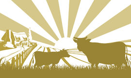 Αγροτική σκηνή βοοειδών Στοκ εικόνα με δικαίωμα ελεύθερης χρήσης