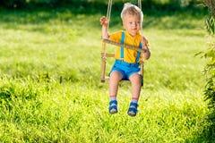 Αγροτική σκηνή με την ταλάντευση αγοριών μικρών παιδιών υπαίθρια Στοκ Εικόνες