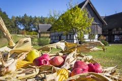 Αγροτική σκηνή στο χωριό το φθινόπωρο Στοκ εικόνες με δικαίωμα ελεύθερης χρήσης