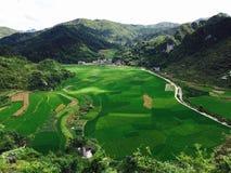 αγροτική σκηνή της Κίνας Στοκ Εικόνες