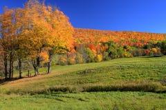 αγροτική σκηνή φθινοπώρο&upsilo Στοκ φωτογραφία με δικαίωμα ελεύθερης χρήσης