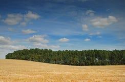 αγροτική σκηνή Shropshire UK στοκ εικόνες