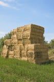 αγροτική τιμή τών παραμέτρων &si στοκ φωτογραφία