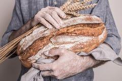 Αγροτική φλοιώδης φραντζόλα του ψωμιού στα χέρια ατόμων ` s αρτοποιών στοκ φωτογραφία
